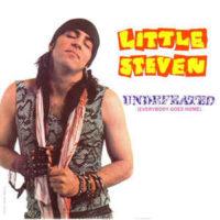littlesteven